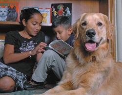 Childrens Reading from Barks & Books